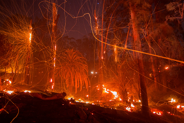 カリフォルニア州「Santa Ana Winds Continue Thomas Fire Threat In Santa Barbara County」:写真・画像(14)[壁紙.com]