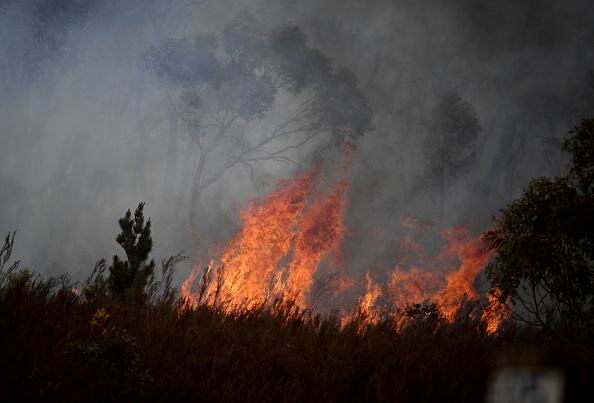 オーストラリア「Fire Crews Work To Bring Tallaganda National Park Bushfire Under Control」:写真・画像(9)[壁紙.com]