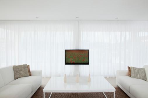 Fashion「Television in modern living room」:スマホ壁紙(19)