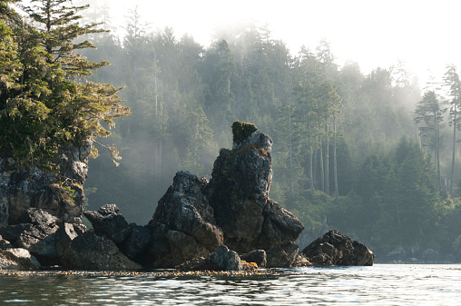 Eco Tourism「Rocky outcropping at water's edge」:スマホ壁紙(15)
