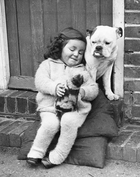 動物「Girl's Best Friend」:写真・画像(9)[壁紙.com]