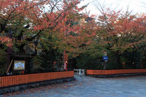 秋+京都「Red Leaves at Shirakawa and Gion, Kyoto, Kyoto, Japan」:スマホ壁紙(12)