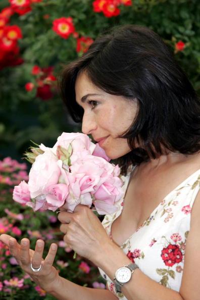 Scented「Birmingham Flower Show」:写真・画像(2)[壁紙.com]
