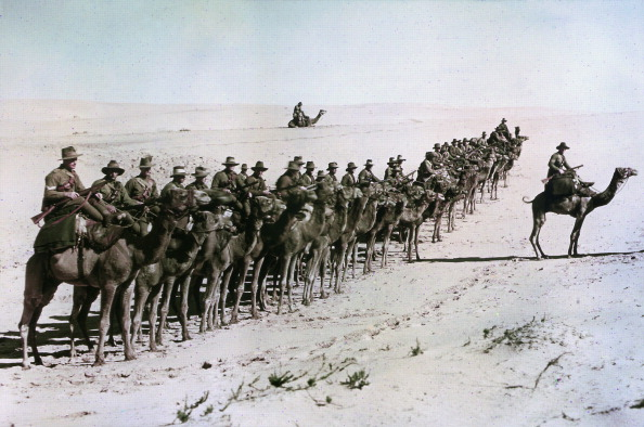Color Image「Australians in Egypt」:写真・画像(15)[壁紙.com]