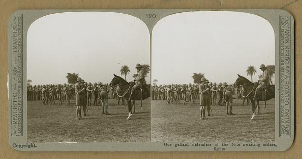 Working Animal「British Troops In Egypt」:写真・画像(19)[壁紙.com]