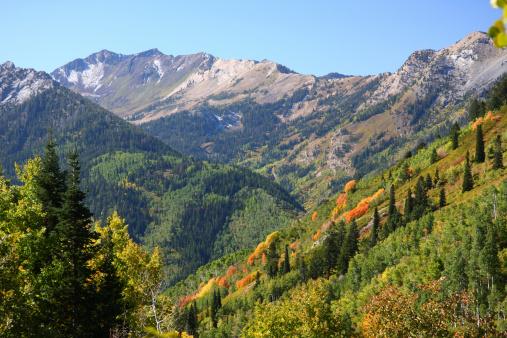Steep「Landscape view of an autumn mountain」:スマホ壁紙(8)