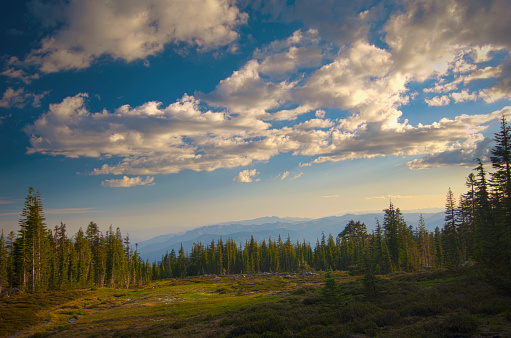 Mt Shasta「View of panther meadows on mount shasta at sunset; california united states of america」:スマホ壁紙(9)
