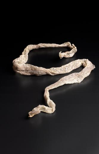Evil「Rattle snake skin with copy space」:スマホ壁紙(5)