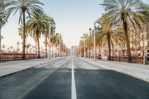 Barcelona - Spain「Barcelona sunrise at the street」:スマホ壁紙(5)