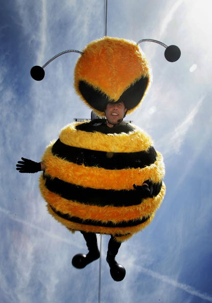60th International Cannes Film Festival「Cannes - Bee Movie - Stunt」:写真・画像(15)[壁紙.com]