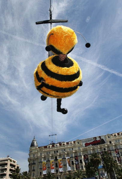 60th International Cannes Film Festival「Cannes - Bee Movie - Stunt」:写真・画像(10)[壁紙.com]