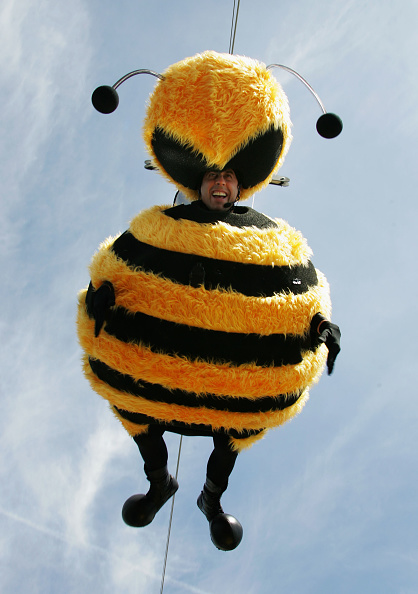 60th International Cannes Film Festival「Cannes - Bee Movie - Stunt」:写真・画像(19)[壁紙.com]
