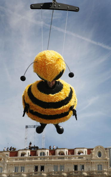 60th International Cannes Film Festival「Cannes - Bee Movie - Stunt」:写真・画像(18)[壁紙.com]