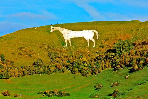 Horse「Wiltshire environment」:スマホ壁紙(10)