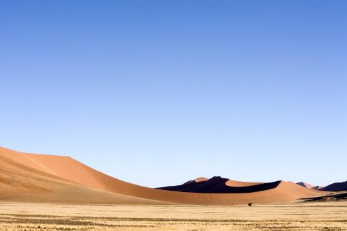 Namibian Desert「Desert Dunes Sossusvlei Namibia」:スマホ壁紙(12)