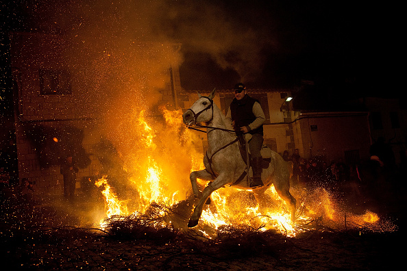 Vertebrate「Las Luminarias de San Anton Festival」:写真・画像(5)[壁紙.com]