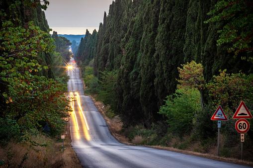 Boulevard「Viale dei cipresi cypresses tree road in Bolgheri. Tuscany」:スマホ壁紙(12)