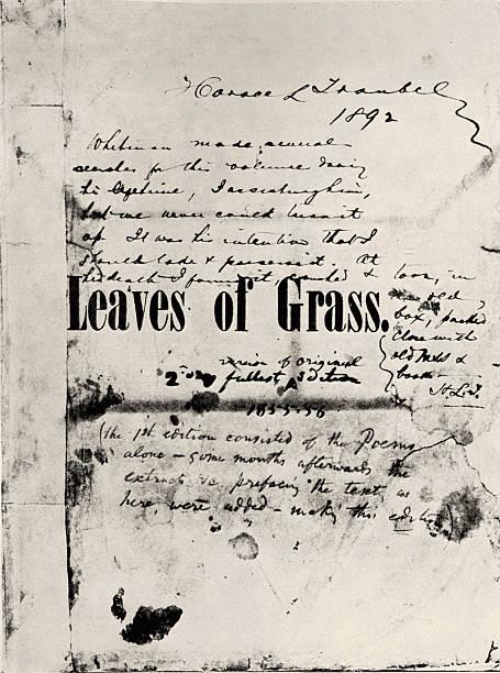 Leaves of Grass -:ニュース(壁紙.com)