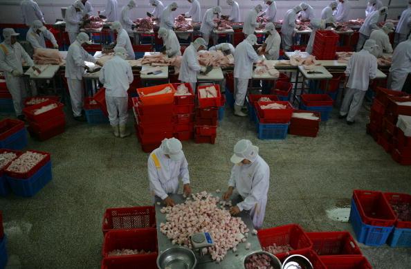 Dumpling「Wufangzhai Zongzi In Jiaxing」:写真・画像(12)[壁紙.com]