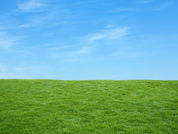 Irish fields:スマホ壁紙(壁紙.com)