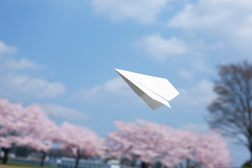 Carefree「Paper Airplane and Cherry Blossom Trees」:スマホ壁紙(14)