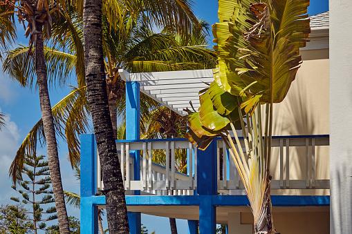 リゾート「A Caribbean hotel.」:スマホ壁紙(7)