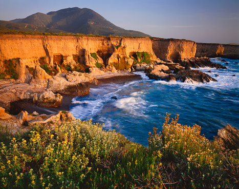 California State Route 1「Romance of the California Coastline (P)」:スマホ壁紙(11)