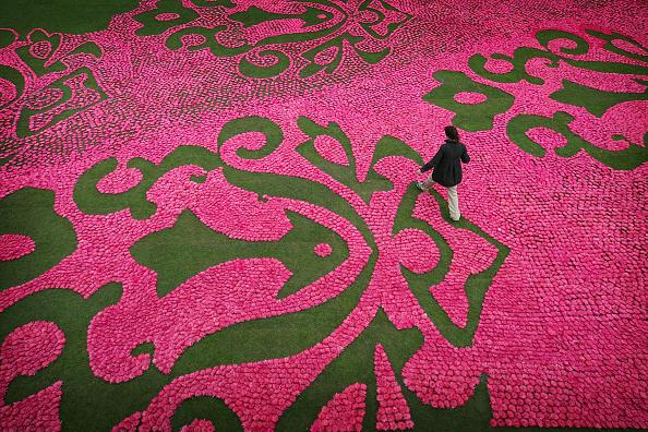 Christopher Furlong「60,000 Blooms Are Arranged In City Centre Square」:写真・画像(4)[壁紙.com]