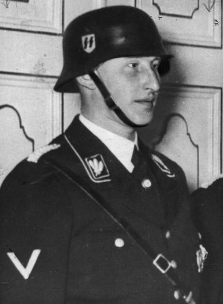 Sports Helmet「Reinhard Heydrich」:写真・画像(8)[壁紙.com]