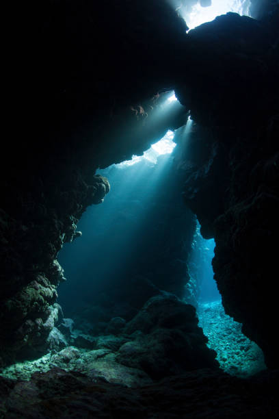Beams of light descend into the darkness of a cavern in the Solomon Islands.:スマホ壁紙(壁紙.com)