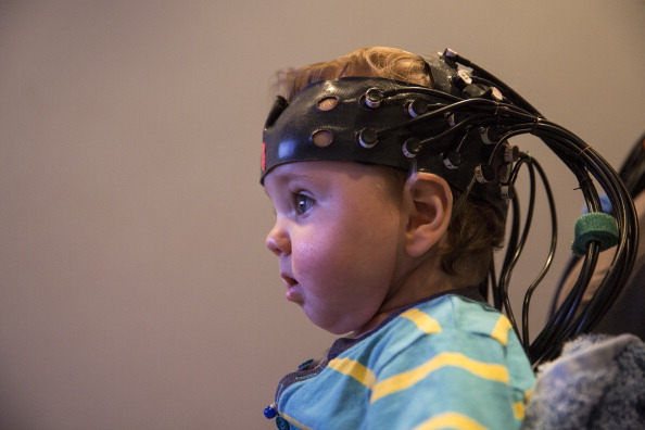 Brain「Research At The Birkbeck Babylab Into Brain And Cognitive Development」:写真・画像(7)[壁紙.com]