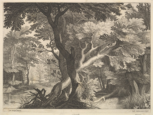 Water's Edge「Wooded Landscape Creator: Raphael Sadeler」:写真・画像(11)[壁紙.com]