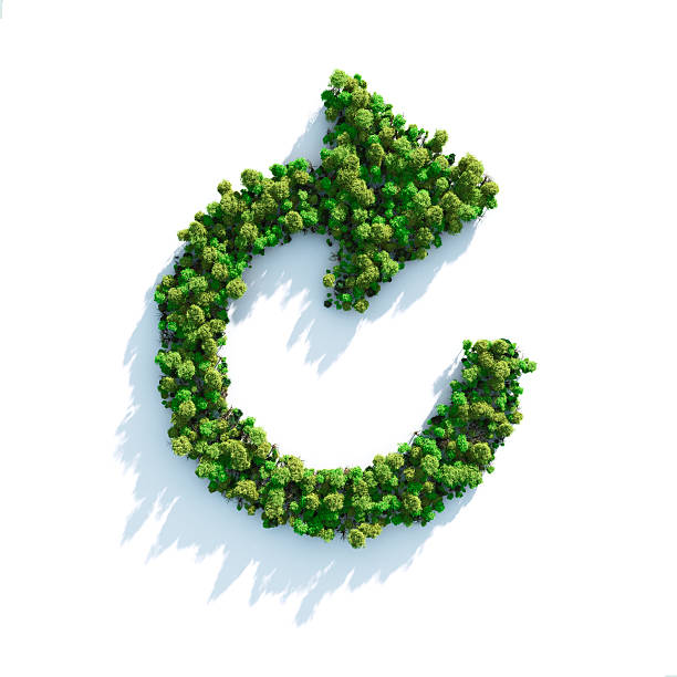 Green Step Forward:スマホ壁紙(壁紙.com)