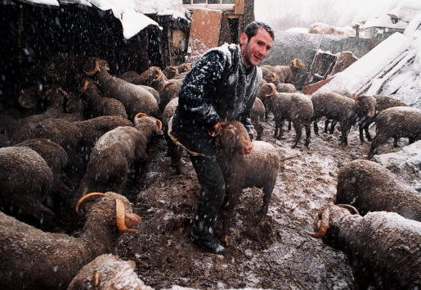Snowing「Moscow's Muslims Celebrate Kurban-Bairam」:写真・画像(13)[壁紙.com]
