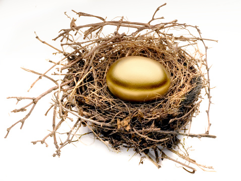 Animal Egg「Gold egg in nest」:スマホ壁紙(14)