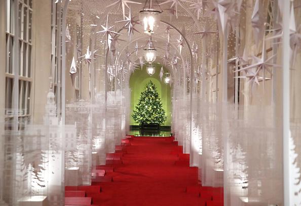 Christmas「The White House Previews Decor For The Holiday Season」:写真・画像(10)[壁紙.com]