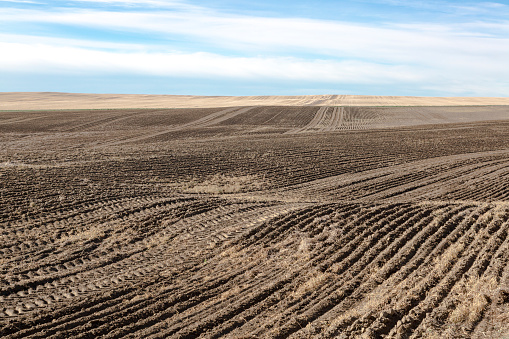 Fertilizer「Tractor tire imprint in a mud field」:スマホ壁紙(12)