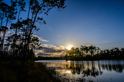 UNESCO「Trees by river at sunset in Everglades National Park, Florida, USA」:スマホ壁紙(12)