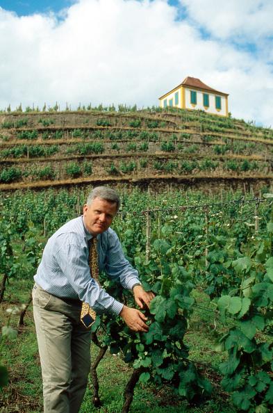 Winemaking「zur Lippe-Weiflenfeld」:写真・画像(16)[壁紙.com]