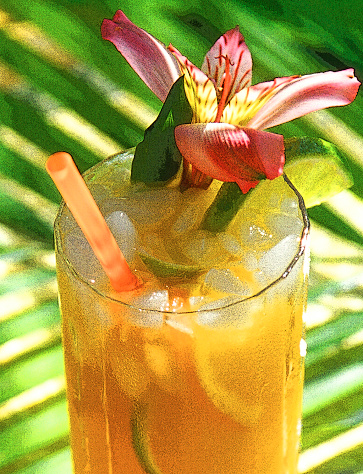 Gulf Coast States「Mai Tai cocktail with straw and edible flower in tropical setting」:スマホ壁紙(4)