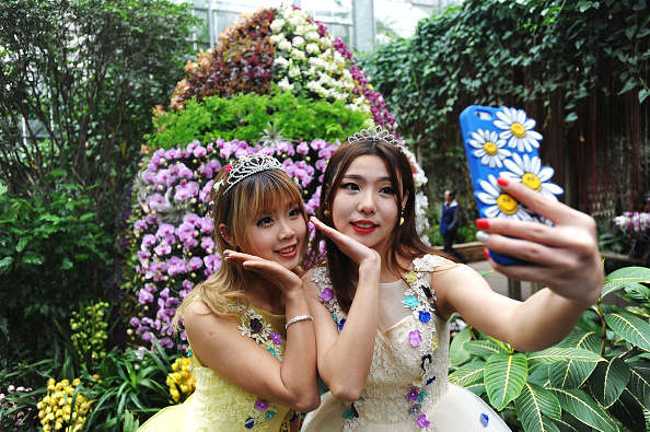 flower「Opening Ceremony Of Tropical Orchid Exhibition Held In Wuhan」:写真・画像(19)[壁紙.com]
