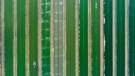 Netherlands「Ragworm cultivation farm - aerial view」:スマホ壁紙(12)