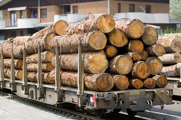 Electric Train「freight train carrying timber in Switzerland」:写真・画像(18)[壁紙.com]