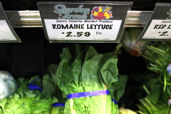 Romaine Lettuce「CDC Warns Americans Against Eating Romaine Lettuce After E Coli Outbreak」:写真・画像(0)[壁紙.com]