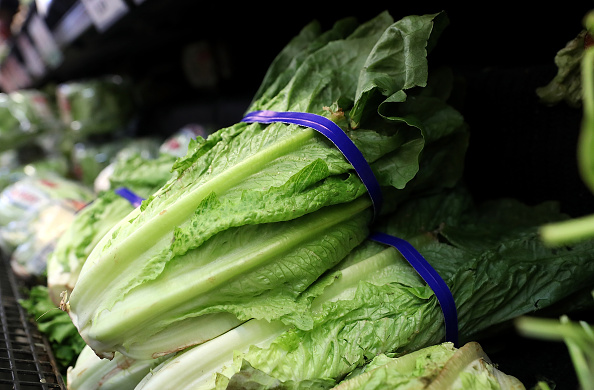 Romaine Lettuce「CDC Warns Americans Against Eating Romaine Lettuce After E Coli Outbreak」:写真・画像(4)[壁紙.com]