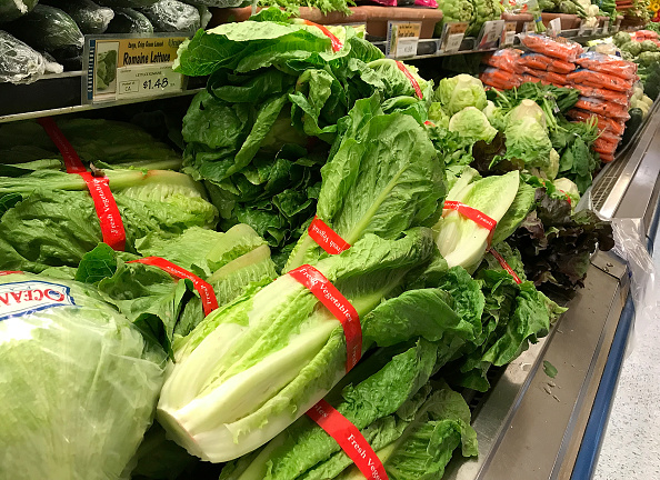 Romaine Lettuce「First Death Reported Related To E Coli Outbreak Sourced To Romaine Lettuce」:写真・画像(5)[壁紙.com]