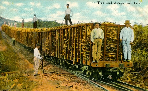 Sugar Cane「Train Load Of Sugar Cane」:写真・画像(10)[壁紙.com]