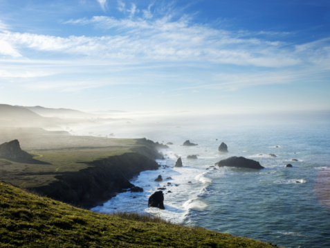 Beauty In Nature「Goat rock State beach area along pacific coast」:スマホ壁紙(8)