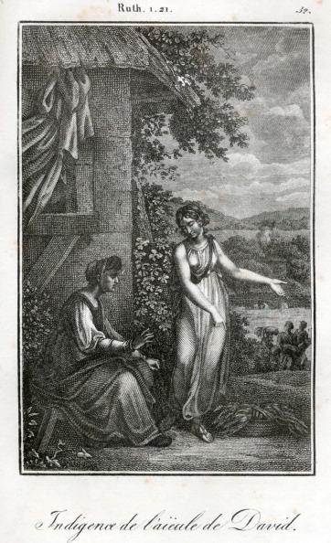 Grass Family「Bible, Ruth and Naomi」:写真・画像(14)[壁紙.com]