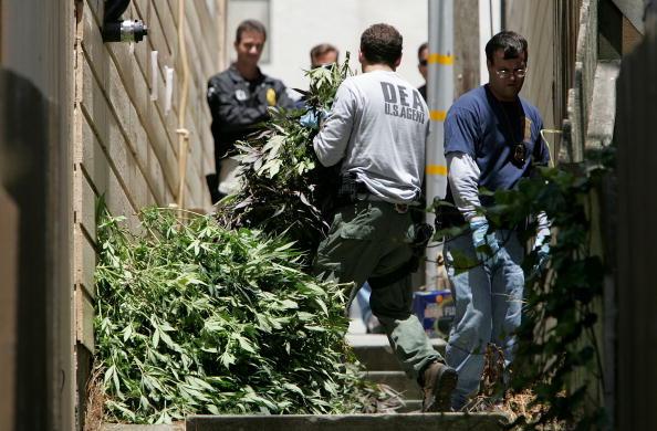 Crime「Federal Agents Raid Medical Marijuana Club」:写真・画像(19)[壁紙.com]